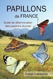 Papillons de France | Nouvelles arthropodes | Scoop.it