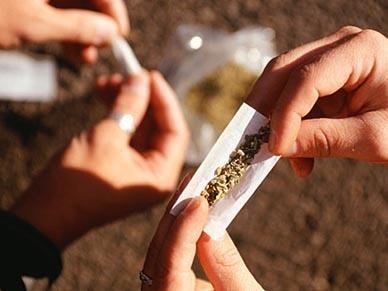 W USA marihuana będzie legalna? | NARKOTYKI | Scoop.it