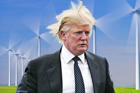 Donald Trump Hates Windmills More Than Hillary Clinton | enjoy yourself | Scoop.it