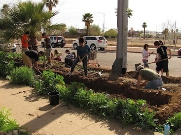 Sun Valley Farming: 10 Urban Agriculture Projects in Phoenix | Before It's News | CALS in the News | Scoop.it