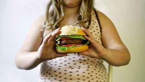 Comment notre environnement favorise l'obésité   Nature Animals humankind   Scoop.it
