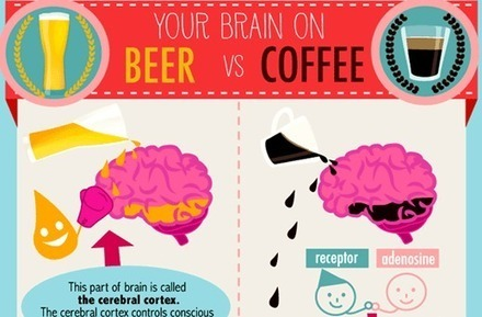 This Is How Your Brain Responds To Beer vs Coffee | open Learn | Scoop.it