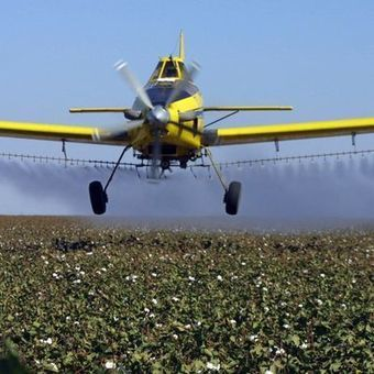 Study: Two-thirds of pesticides got flawed EPA approval | Nutrition & Health | Scoop.it