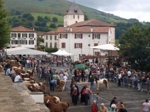 Monnaie basque | Le fonds d'investissement Herrikoa soutient l'eusko | EITB Actualités Économie | Monnaies En Débat | Scoop.it