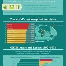 Global Hunger Index | Visual.ly | Development Economics IB | Scoop.it