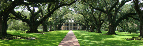 Oak Alley Plantation - Distant | Oak Alley Plantation: Things to see! | Scoop.it