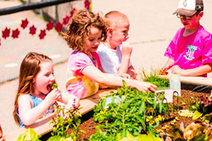 Lessons from a super school garden | Food issues | Scoop.it