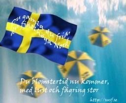 Huka er gummor och gubbar | Sveriges Undersköterska & Specialistundersköterska Förening, SUSF | Scoop.it