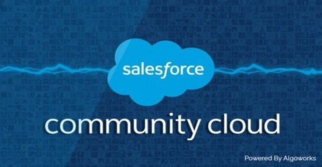 Why you need Salesforce community cloud – The final verdict | Business Apps | Scoop.it