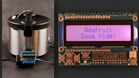 Turn Your Rice Cooker Into An Arduino-Powered, DIY Sous Vide Machine - Lifehacker Australia | Arduino and Makers world | Scoop.it