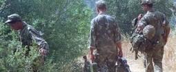 Terrorisme : 14 militaires tués dans un accrochage près de Tizi Ouzou | Automobile Algérie | Scoop.it