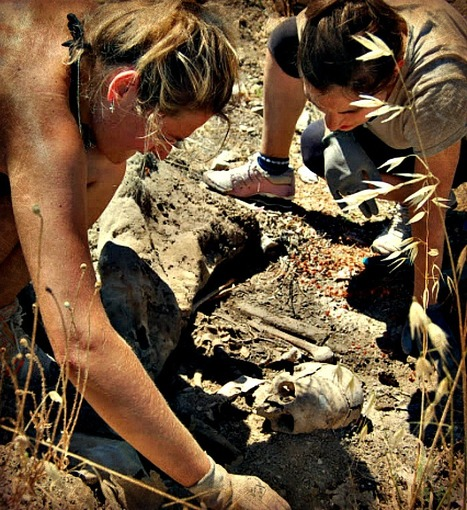 Archaeologists uncover the life and deaths along the Via Flaminia | Le Marche another Italy | Scoop.it