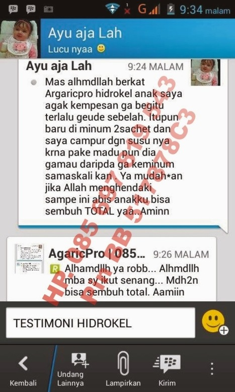 Obat Herbal Hidrokel Paling Ampuh Tanpa Operasi   AgaricPro Herbal Alami   Dede AgaricTop   Scoop.it