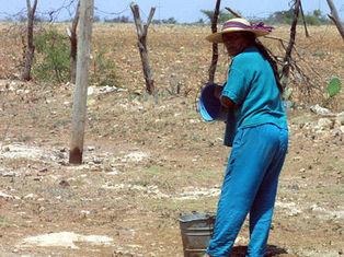 México sufre graves daños por sequía, frío e inundaciones en 2011 ... | Conoce Mexico | Scoop.it