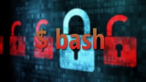 Shellshock bug: A shock for internet browsers! - The Official 360logica Blog | Trending | Scoop.it