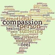 A Pilot Study and Randomized Controlled Trial of the Mindful Self-Compassion Program - Defining Wisdom | A Project of the University of Chicago - Publications | Psicología Positiva, Felicidad y Bienestar. Positive Psychology,Happiness & Wellbeing | Scoop.it