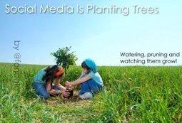Social Media Is PlantingTrees | Surviving Social Chaos | Scoop.it