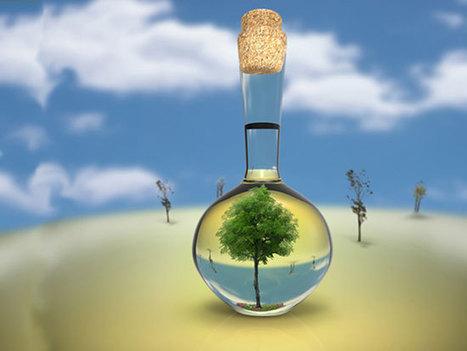Bio-based chemicals: When green is toxic | Biocarburants et Energies Renouvelables | Scoop.it
