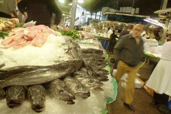 El ADN demuestra que el 8,6% de la merluza vendida en Madrid no es merluza.   All About Food   Scoop.it