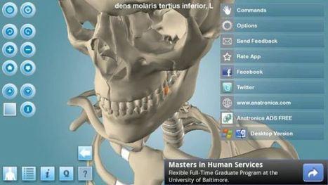 Doako 5 aplikazio 3Dn anatomia lantzeko. Bukaeran, baita Biologia, Fisika, Hizkuntza, Gizarte lantzeko  beste hainbaterako estekak | IKT Tresnak Ikaskuntzarako | Scoop.it