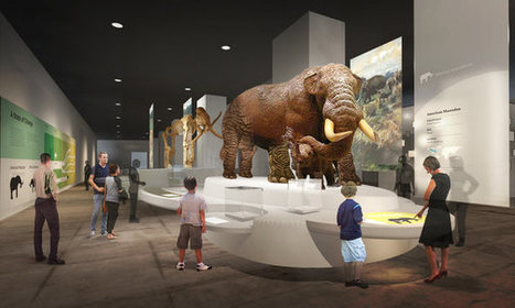 State Museum in Albany Plans Overhaul of Its Galleries | The New York Times | Kiosque du monde : A la une | Scoop.it