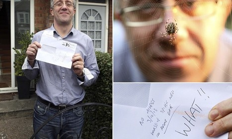 Postman refuses to deliver letter because of a 'massive' spider web blocking path to front door... made by arachnid no bigger than a 10p piece | Radio Show Contents | Scoop.it