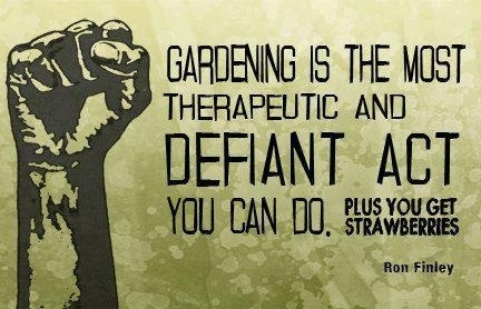 Defiant Gardening is A Independent Revolutionary Act | sustainablehomes | Scoop.it
