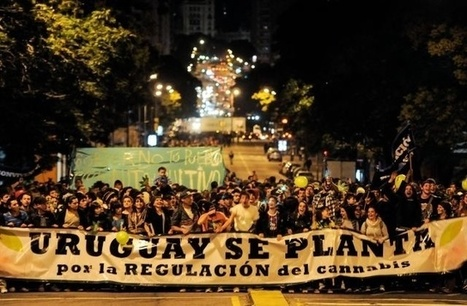 Every Weed Smoker's Fantasy Is About to Come True in Uruguay | Drugs and Human Rights | Scoop.it