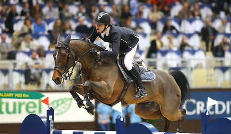 STEVE GUERDAT, LE SCÉNARIO PARFAIT! | GrandPrix-replay.com | Equestrian Social Media | Scoop.it