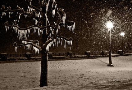20 Wonderful Examples of Winter Photography | Photography-watch, think, shoot, improve | Scoop.it