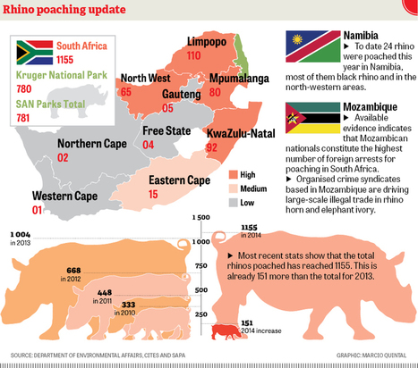 2014 Rhino Poaching Stats | Save our Rhino and all animals...this is what it looks like!!!!! | Scoop.it