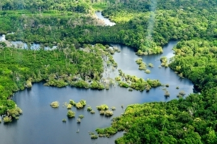 Drying Amazon Could Be Major Carbon Concern Going Forward | Amazing Science | Scoop.it