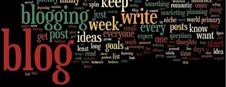 Netmediablog Successful blogging guide roundup 2013 | WordPress & Bivori Blogging | Scoop.it