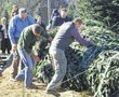 White House tree begins its journey | Jefferson Post | North Carolina Agriculture | Scoop.it