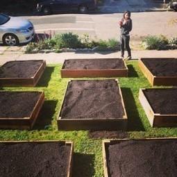 Couple Turns Useless Front Lawn into Beautiful Edible Garden (36 PHOTOS)   Nouveaux paradigmes   Scoop.it