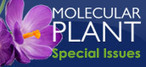 Covering Your Bases: Inheritance of DNA Methylation in Plant Genomes | Plant Gene Seeker -PGS | Scoop.it