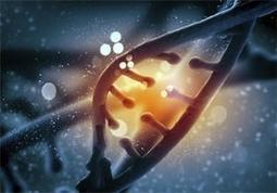 Biobank team feature in 100,000 Genomes Project films | Biobanche | Scoop.it