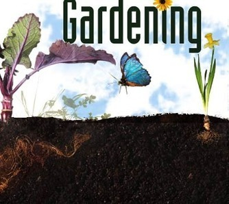 Science of Gardening: Art & Science in the Garden | Exploratorium | STEM | Scoop.it