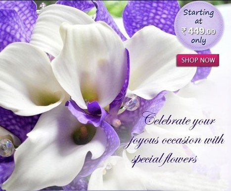 Online Flower Delivery in India | Online Flower Delivery in India | Scoop.it