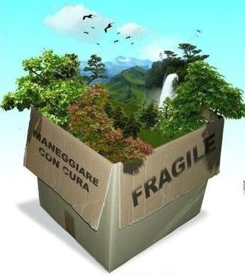 Nuovi modelli per comunicare la sostenibilità | Green and Social Media | Scoop.it