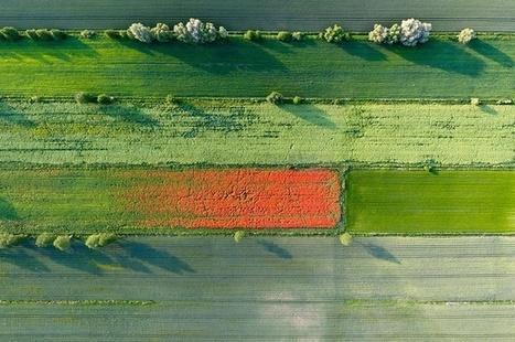 Aerial Photography by Kacper Kowalski | Digital-News on Scoop.it today | Scoop.it