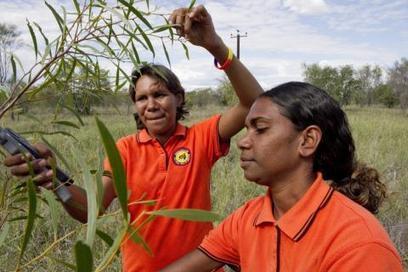 Closing the Gap in Indigenous Disadvantage | Indigenous Education | Scoop.it