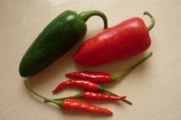 UA researcher and colleagues discover the birthplace of the chili pepper : Gary Nabhan | Erba Volant - Applied Plant Science | Scoop.it