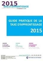 Guide pratique de la Taxe d'apprentissage 2015 | reforme apprentissage | Scoop.it