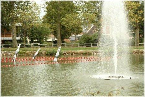 Lamotte-Beuvron > Le canal de la Sauldre | Autour de Nouan-le-Fuzelier | Scoop.it