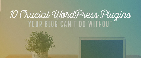 10 Crucial WordPress Plugins Your Blog Can't Do Without | El Mundo del Diseño Gráfico | Scoop.it