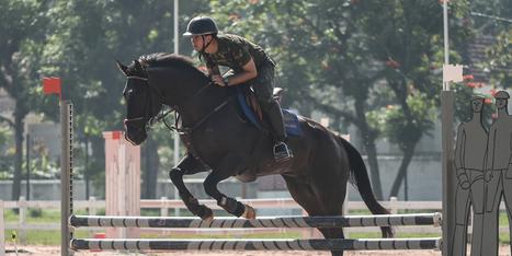 JO 2016 à Rio : enquête sur une maladie mortelle des chevaux | Cheval et sport | Scoop.it