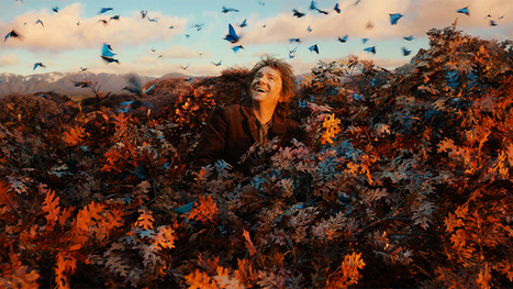 'The Hobbit' Strong with $31 Million Start Friday Despite Trailing Original - Variety | 'The Hobbit' Film | Scoop.it