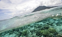 Ocean warming and acidification needs more attention, argues US | Sustain Our Earth | Scoop.it