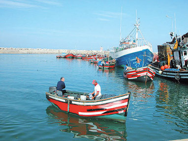ALGÉRIE: Mostaganem, grogne chez les armateurs de pêche | Aquaculture and Fisheries - World Briefing | Scoop.it